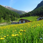 South Tyrol wonderful countryside