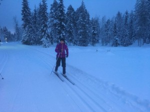Cross-country ski lessons Lapland