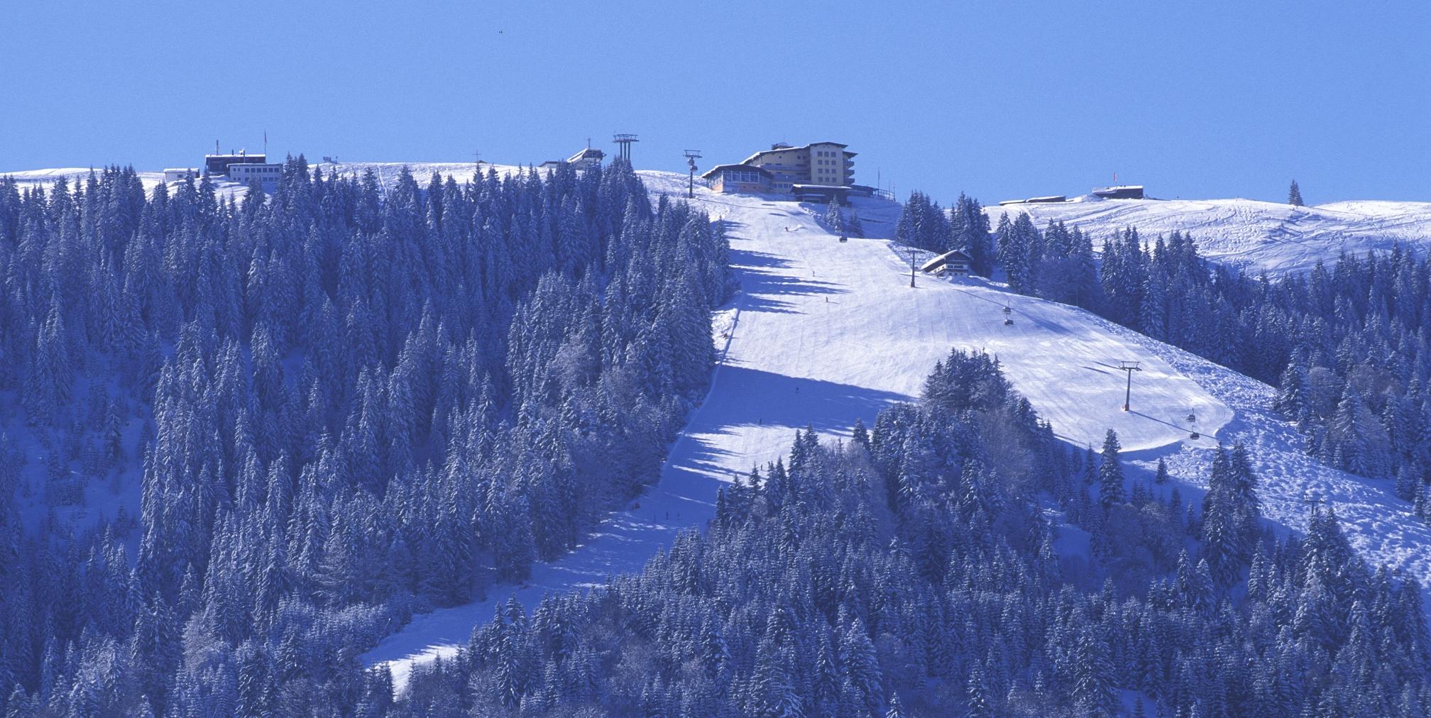 Skiing in Niederau